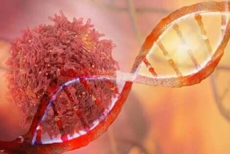 DNA sarmalı ve kanser hücresi görseli