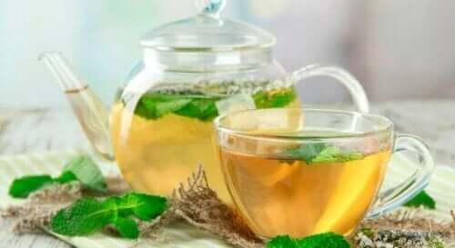 Cam bir demlik ve bardakta nane çayı.