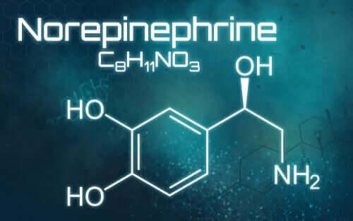 Norepinefrin Nedir, Ne İçin Kullanılır?