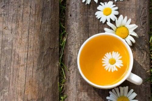 papatyalar fincan çay