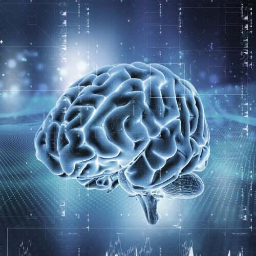 parlayan beyin