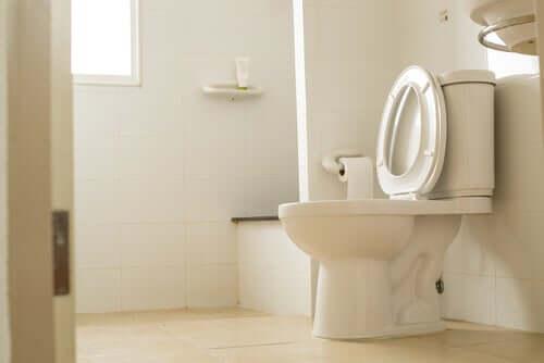 Halka Açık Tuvaletten Mikrop Kapmak Mümkün mü?