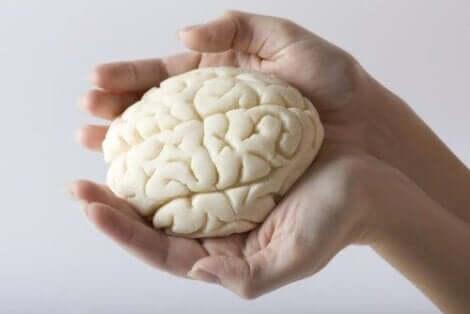beyin ve akıl sağlığı