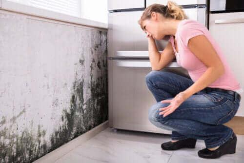 Evde Küflenme Olması Sağlık Sorunlarına Yol Açar Mı?