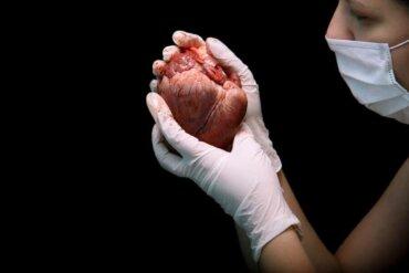 Kalp Nakli İşlemi Nelerden Oluşur?