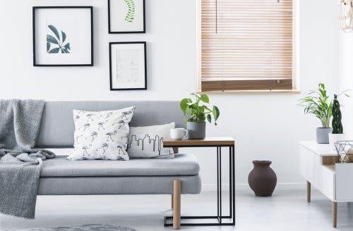 Minimalist bir şekilde dekore edilmiş bir oturma odası.