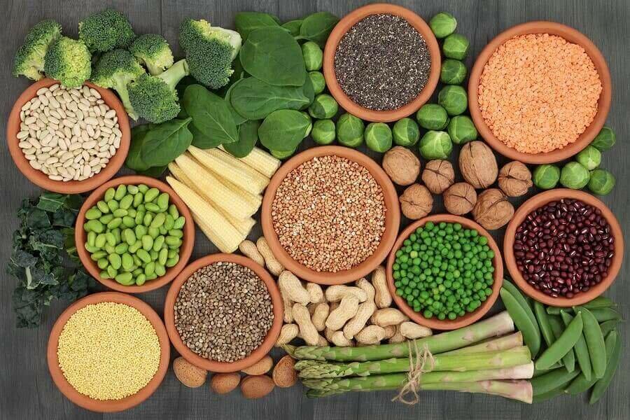 Vegan Diyet İçin Temel Protein Kaynakları
