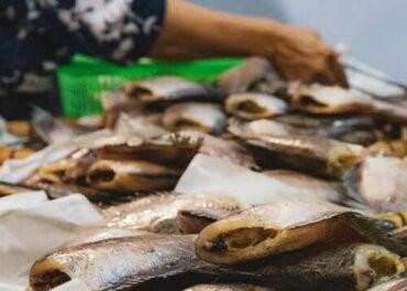 Farklı Balık Zehirlenmesi Türlerinin Belirtileri