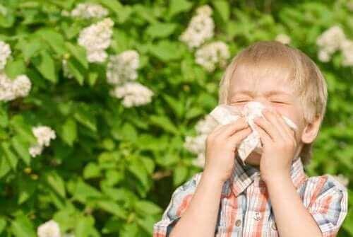 burnunu silen çocuk polen alerjisi