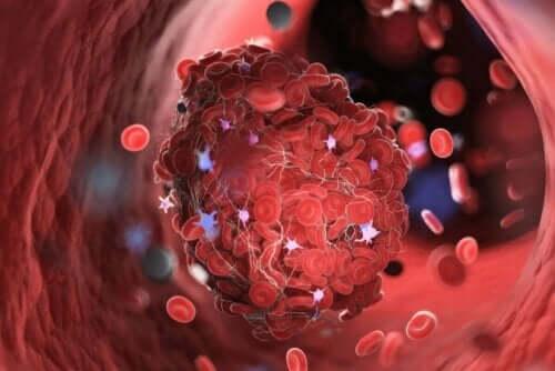 Kan pıhtısının mikroskobik görüntüsü