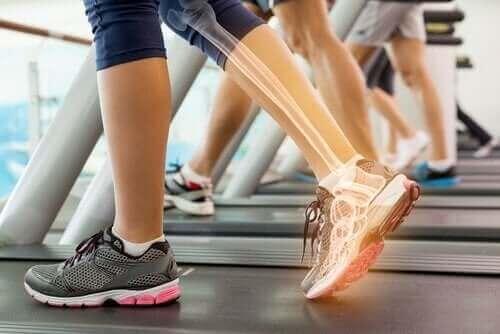 Koşu bandında egzersiz yapan bir kadın.
