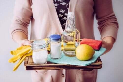 tepsi temizlik ürünleri limon