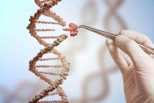 insan genomu