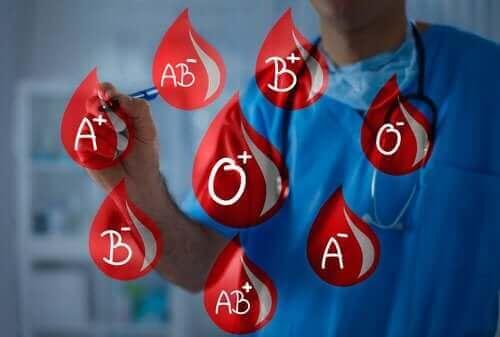 Kan Grupları: Kan Bağışlamak ve Kan Almak