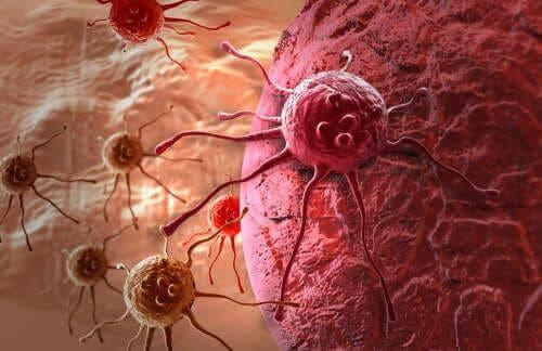 Alkali diyet ve kanser ilişkisi