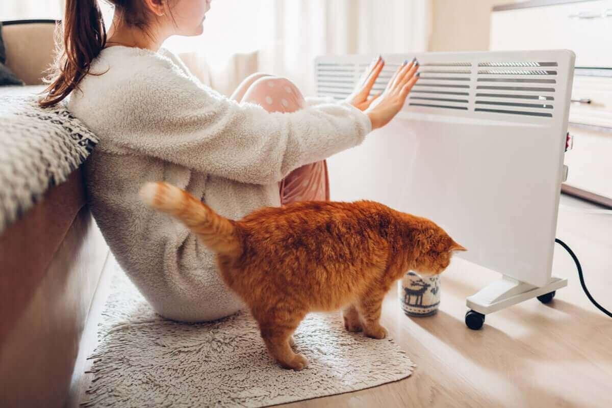 elektrikli kalorifer ile ısınan kedi ve kadın