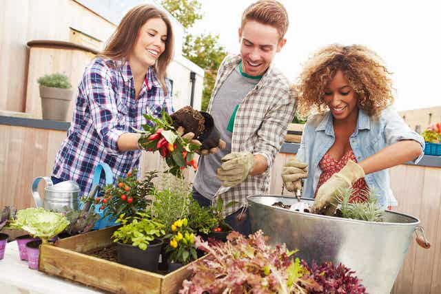 beraber bahçe düzenleyen dostlar