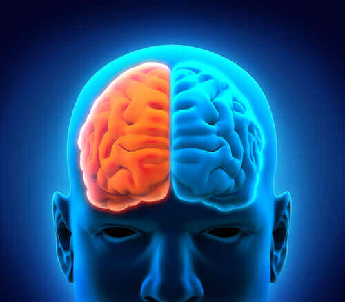 beynin iki tarafı
