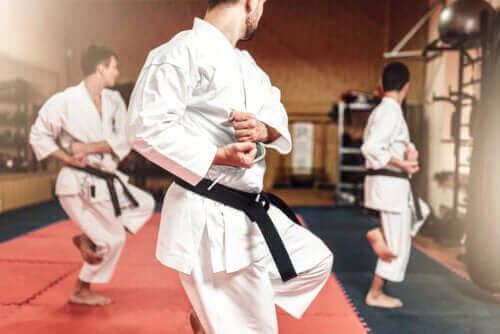 Karate ve Tekvando Arasındaki Farklar