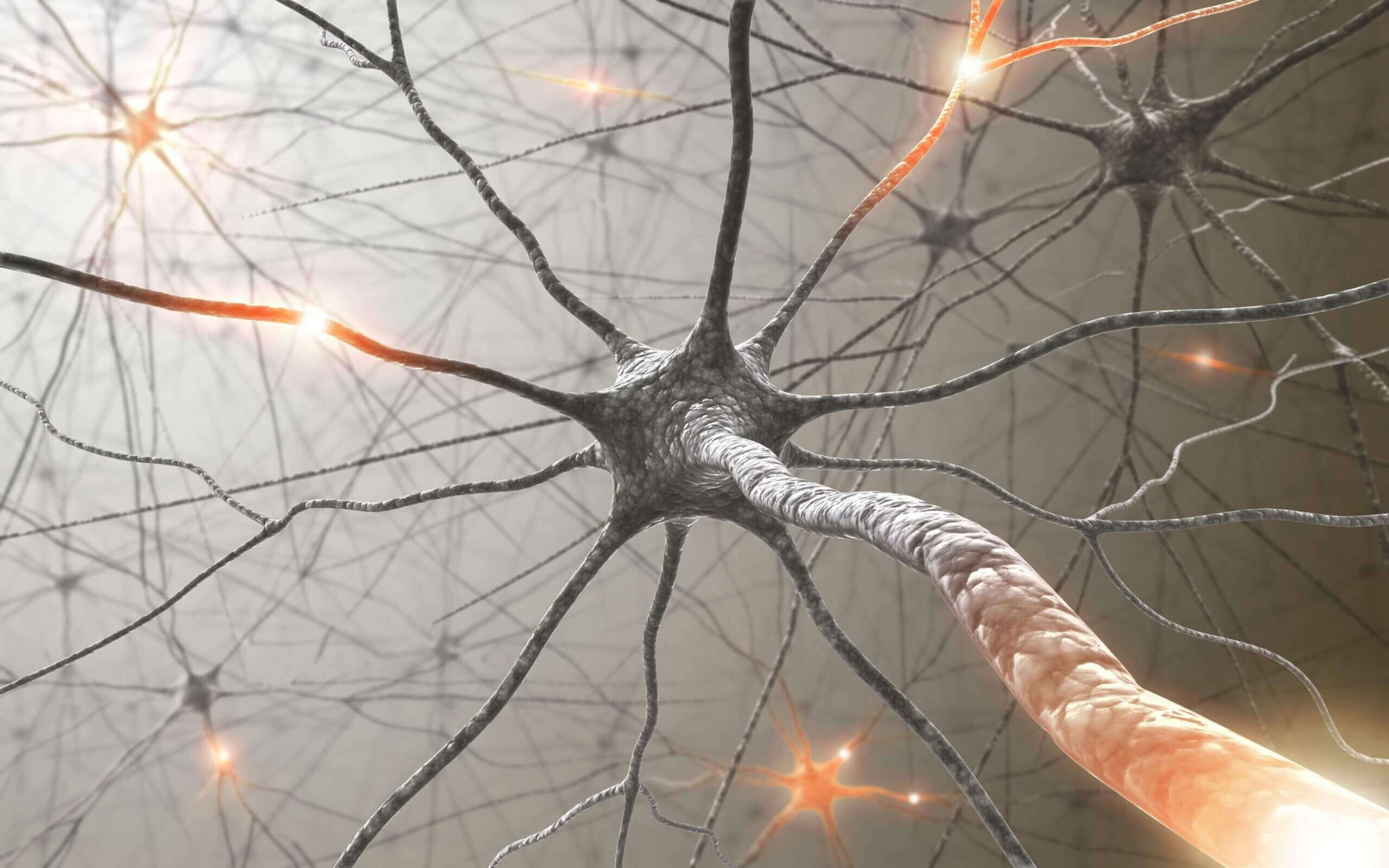bağlı nörünlar