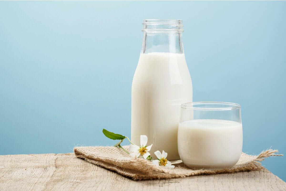 süt sürahini yanında bir bardak süt