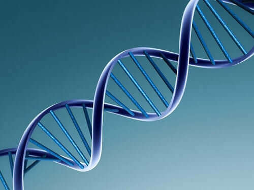 bir DNA sarmalı
