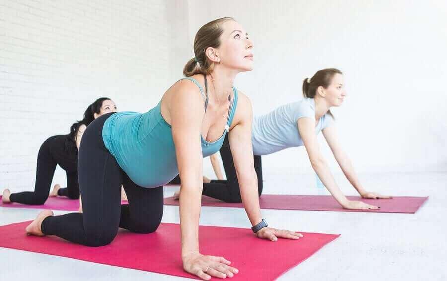 yoga yapan hamile kadın