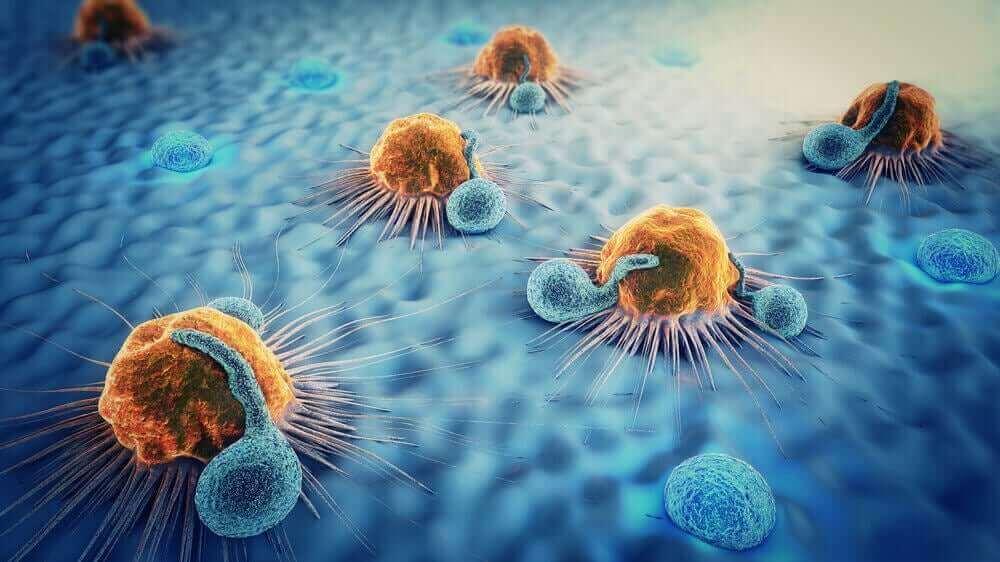 metastaz yapan hücre görüntüleri