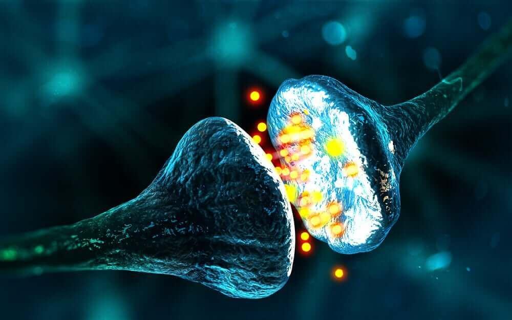 elektron geçişi sırasında iki nöron