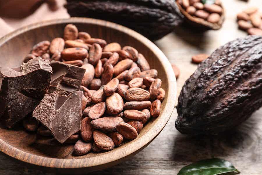 İşlenmiş kakaolu kakao çekirdekleri.